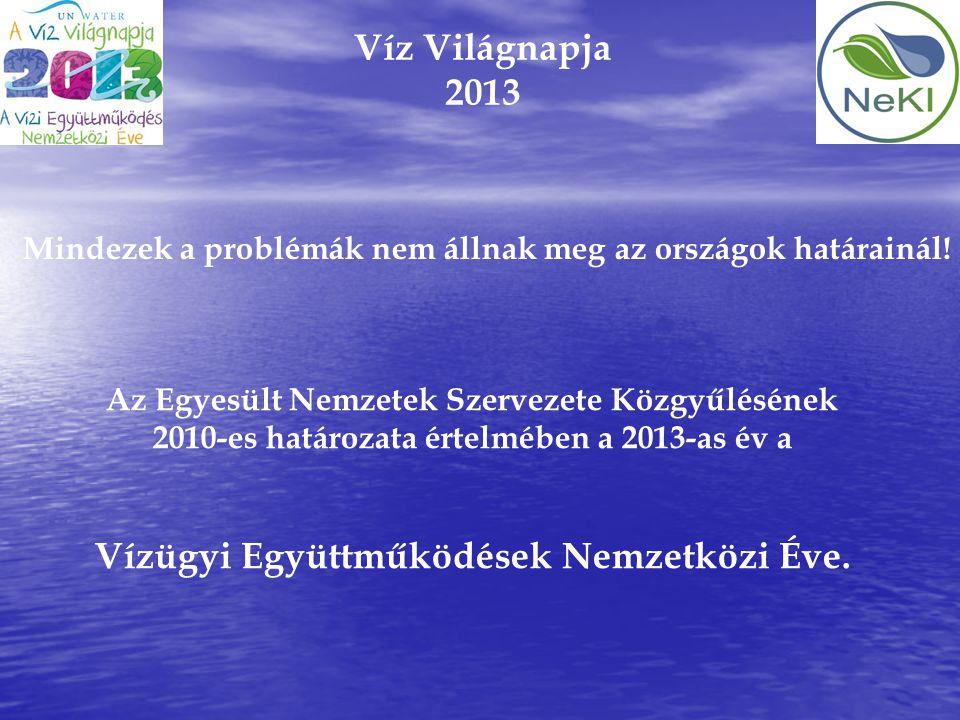 Vízügyi Együttműködések Nemzetközi Éve.