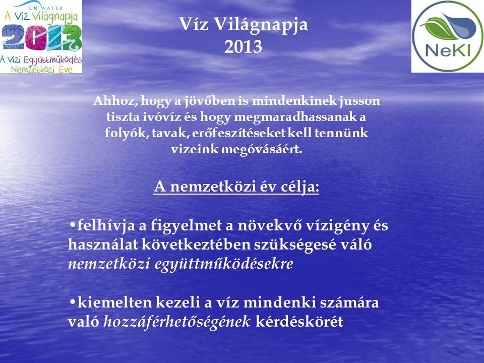 Víz Világnapja 2013 A nemzetközi év célja: