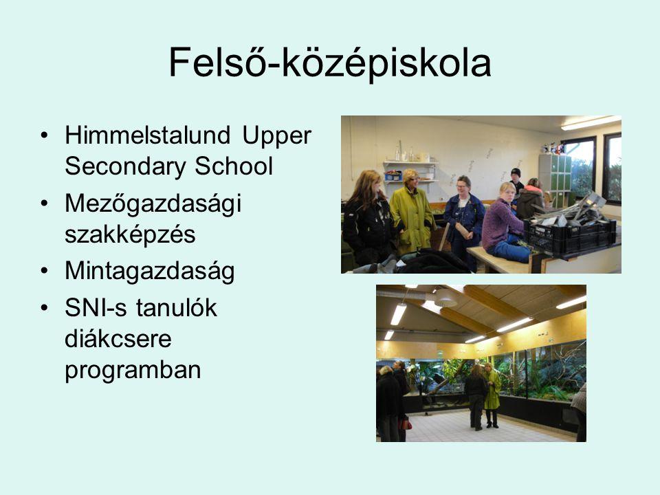 Felső-középiskola Himmelstalund Upper Secondary School