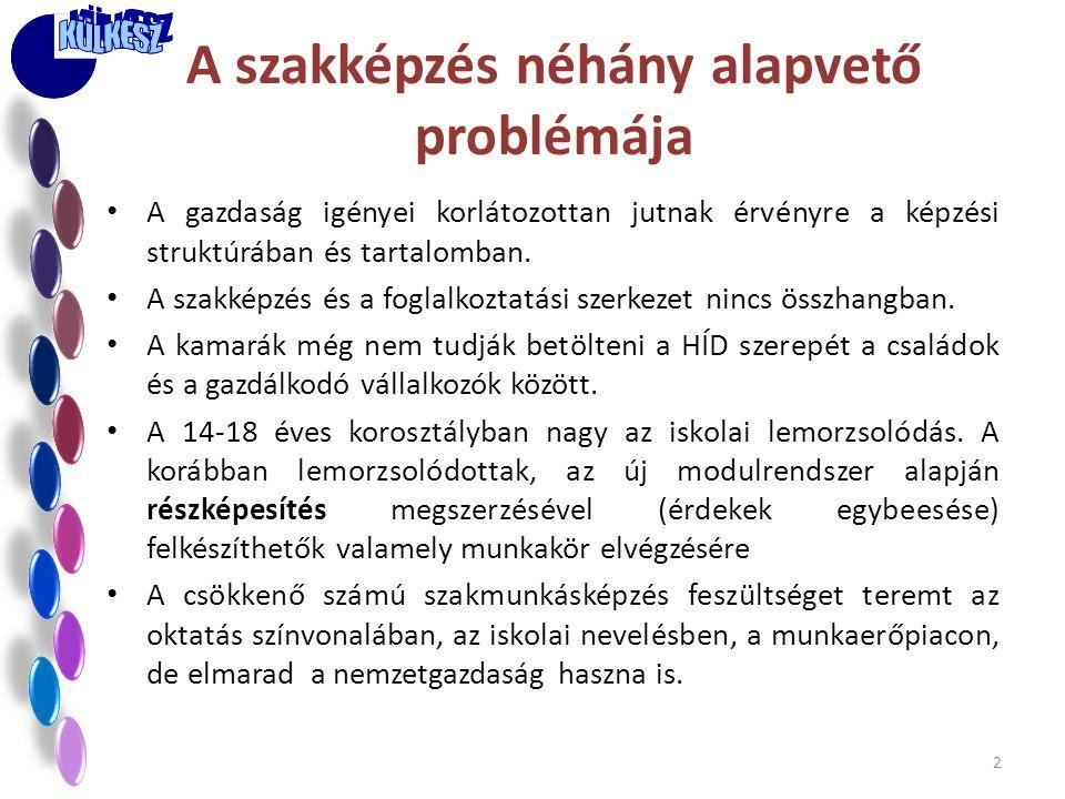 A szakképzés néhány alapvető problémája