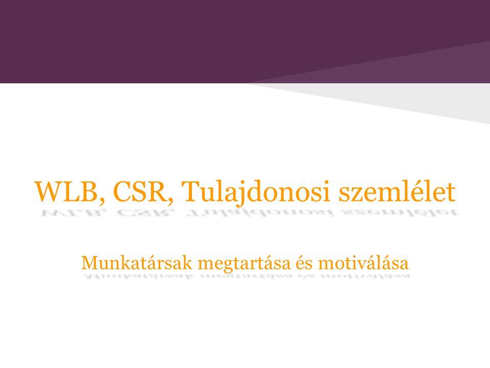 WLB, CSR, Tulajdonosi szemlélet