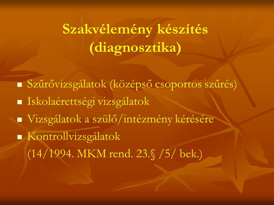 Szakvélemény készítés (diagnosztika)