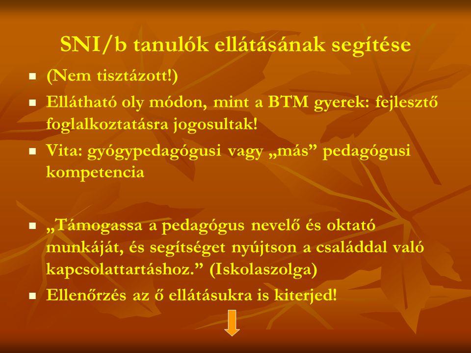 SNI/b tanulók ellátásának segítése