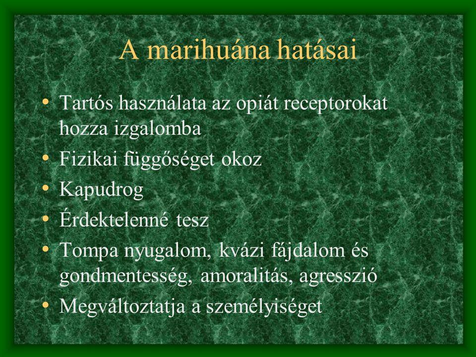 A marihuána hatásai Tartós használata az opiát receptorokat hozza izgalomba. Fizikai függőséget okoz.