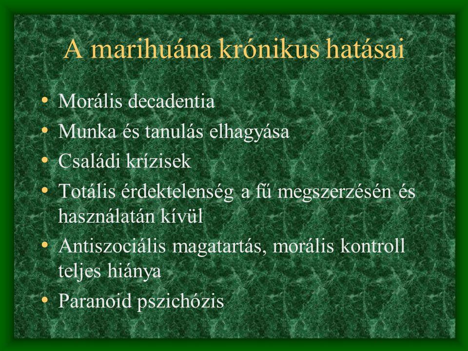 A marihuána krónikus hatásai