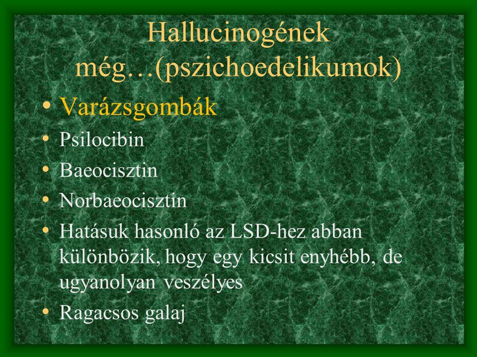 Hallucinogének még…(pszichoedelikumok)