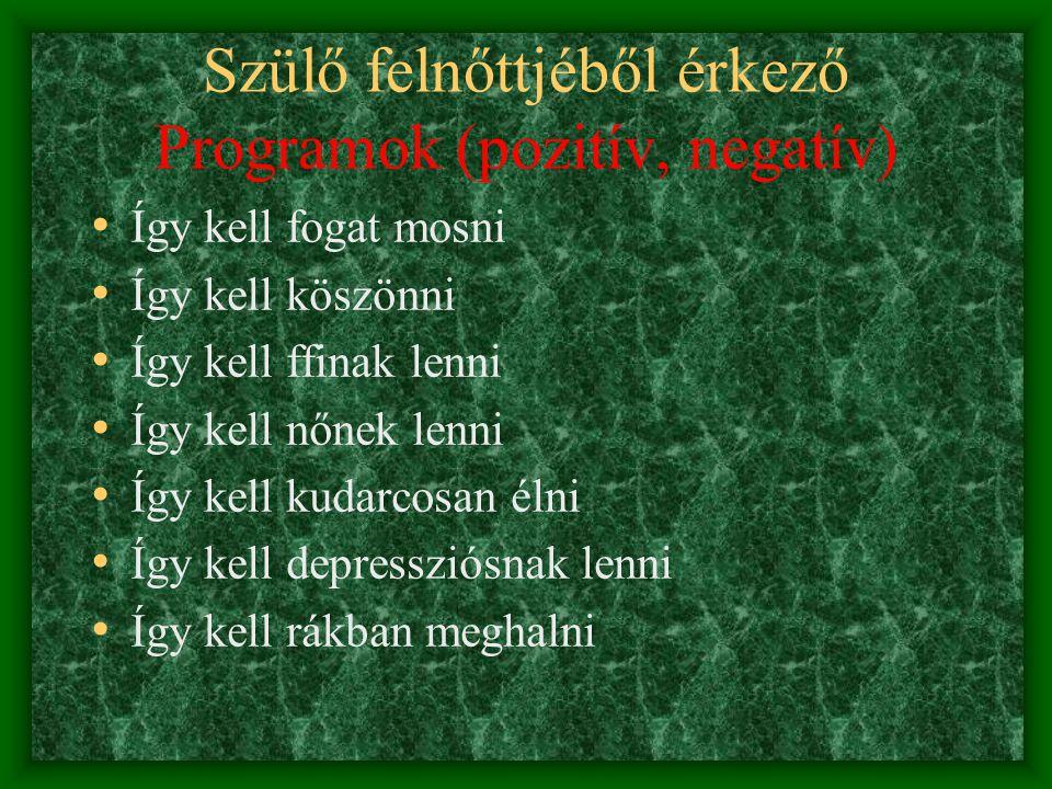 Szülő felnőttjéből érkező Programok (pozitív, negatív)