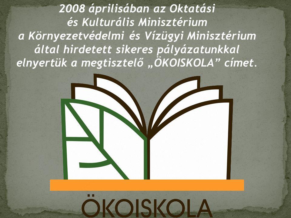 2008 áprilisában az Oktatási és Kulturális Minisztérium