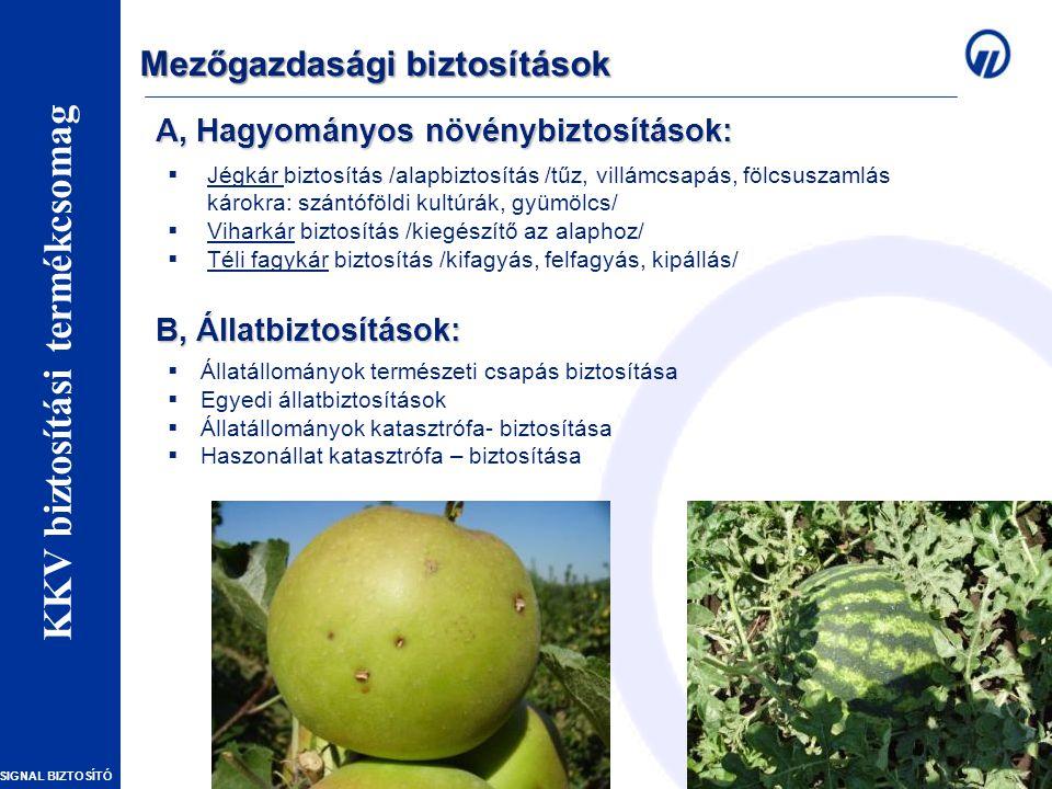 A, Hagyományos növénybiztosítások: