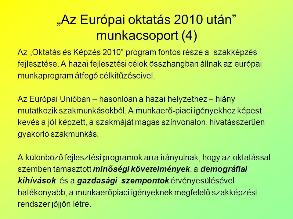 """""""Az Európai oktatás 2010 után munkacsoport (4)"""