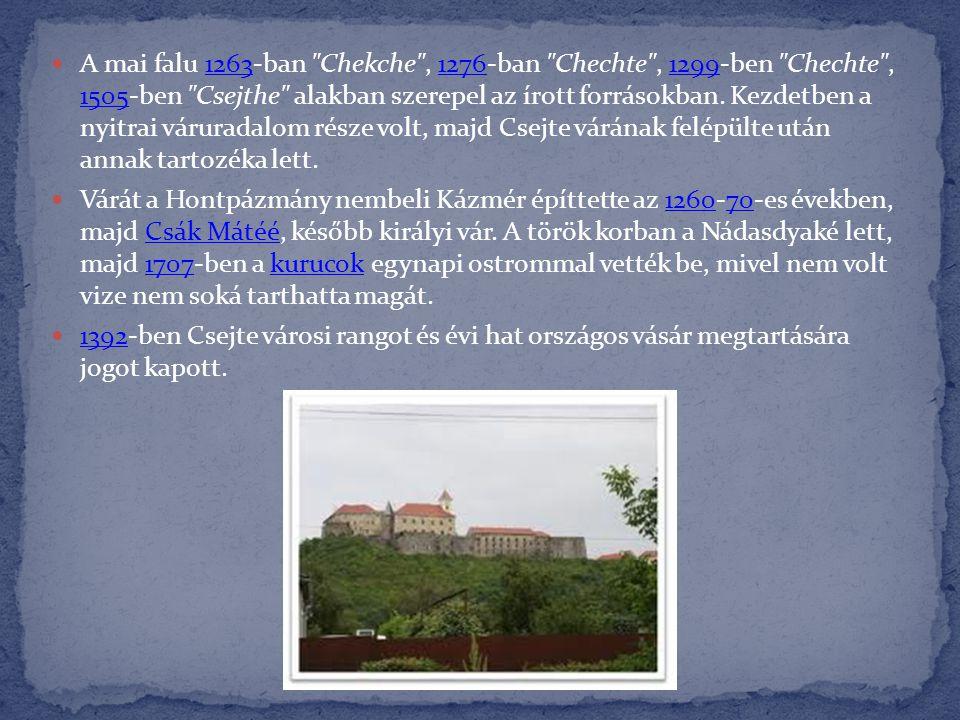 A mai falu 1263-ban Chekche , 1276-ban Chechte , 1299-ben Chechte , 1505-ben Csejthe alakban szerepel az írott forrásokban. Kezdetben a nyitrai váruradalom része volt, majd Csejte várának felépülte után annak tartozéka lett.