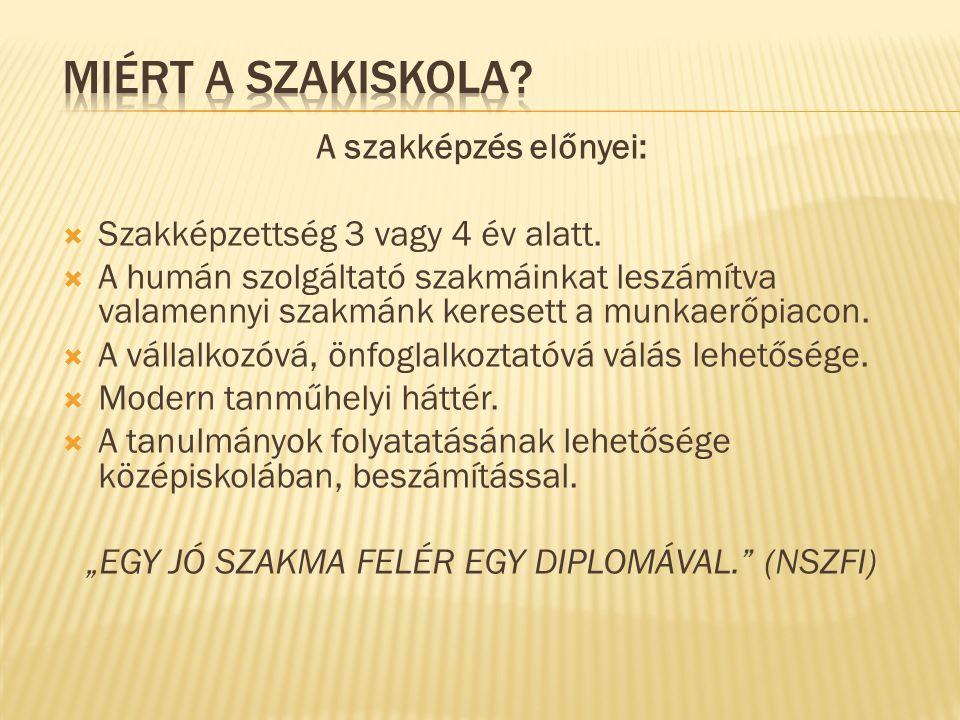 """""""EGY JÓ SZAKMA FELÉR EGY DIPLOMÁVAL. (NSZFI)"""