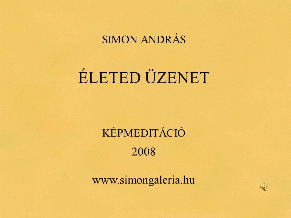 SIMON ANDRÁS ÉLETED ÜZENET KÉPMEDITÁCIÓ 2008 www.simongaleria.hu