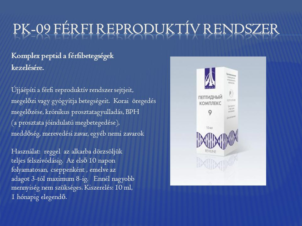 PK-09 FÉRFI reproduktív rendszer