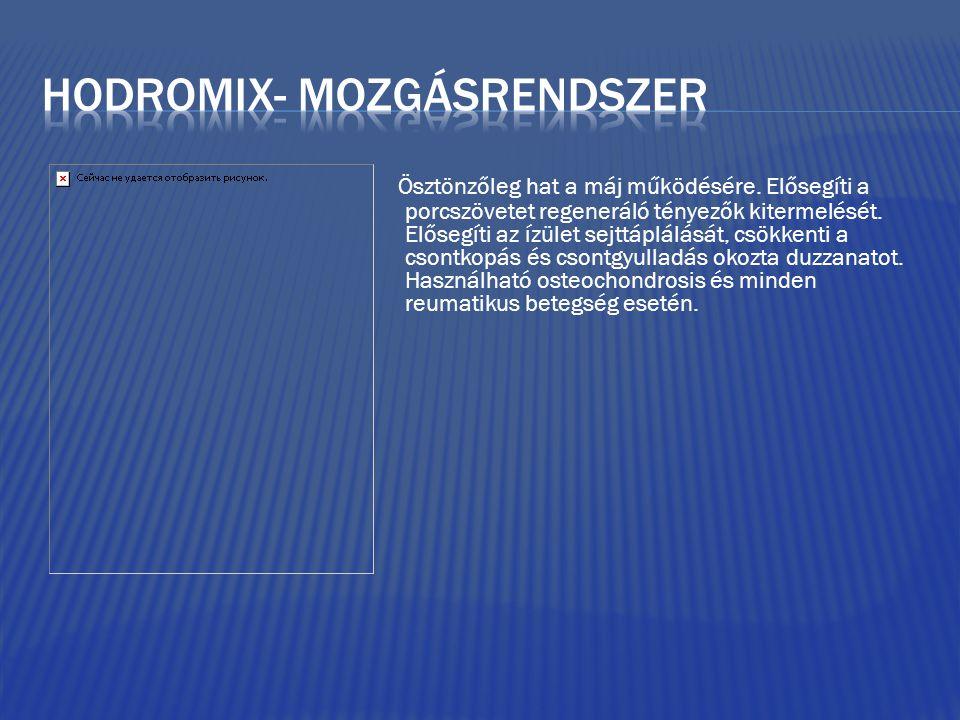 Hodromix- mozgásrendszer