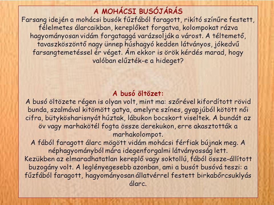 A MOHÁCSI BUSÓJÁRÁS