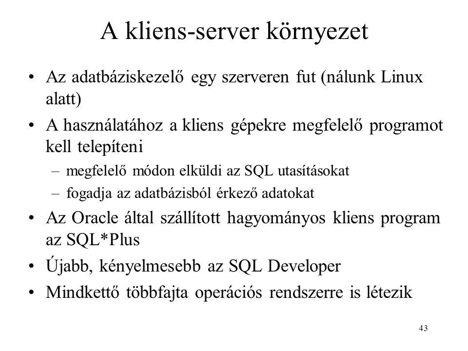 A kliens-server környezet