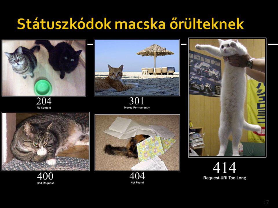 Státuszkódok macska őrülteknek