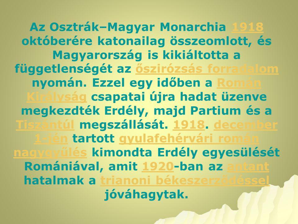 Az Osztrák–Magyar Monarchia 1918 októberére katonailag összeomlott, és Magyarország is kikiáltotta a függetlenségét az őszirózsás forradalom nyomán.