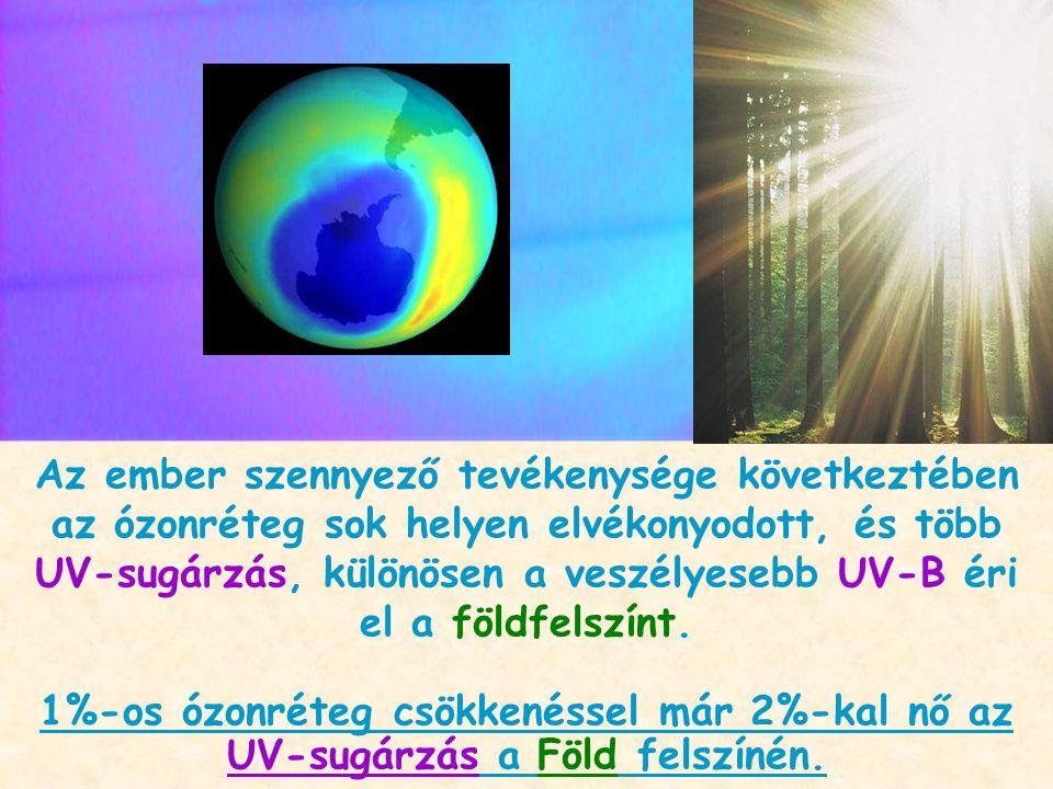 Az ember szennyező tevékenysége következtében az ózonréteg sok helyen elvékonyodott, és több UV-sugárzás, különösen a veszélyesebb UV-B éri el a földfelszínt.