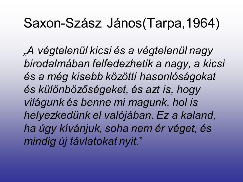 Saxon-Szász János(Tarpa,1964)
