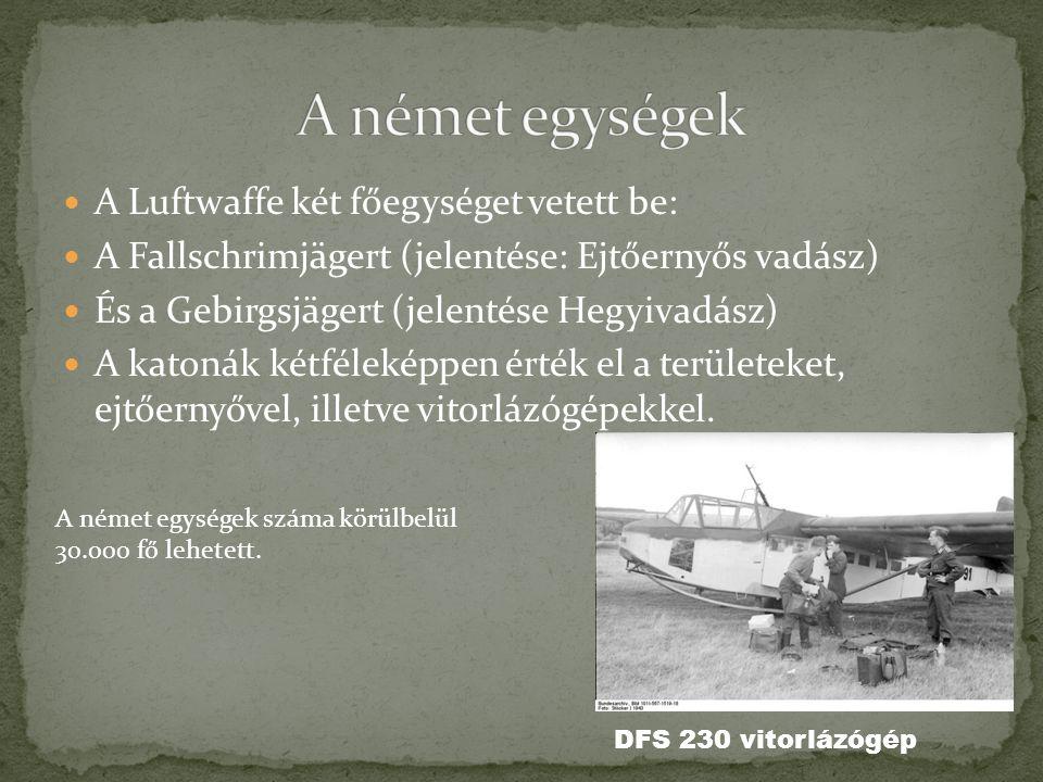 A német egységek A Luftwaffe két főegységet vetett be: