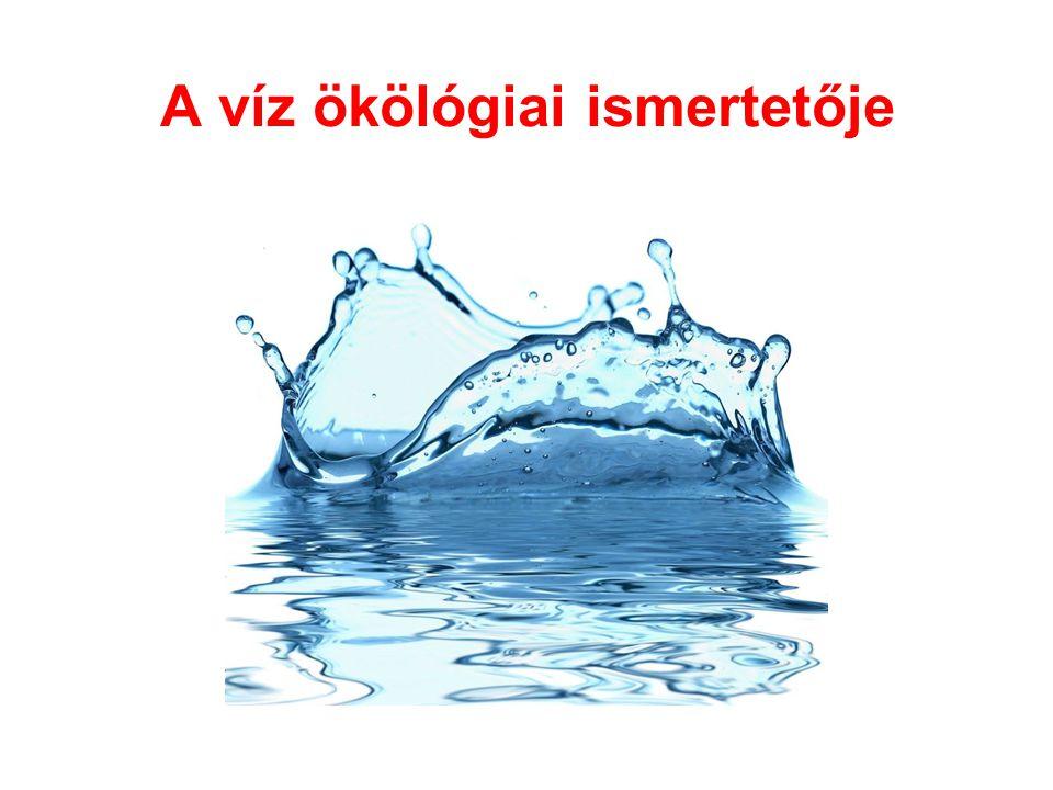 A víz ökölógiai ismertetője