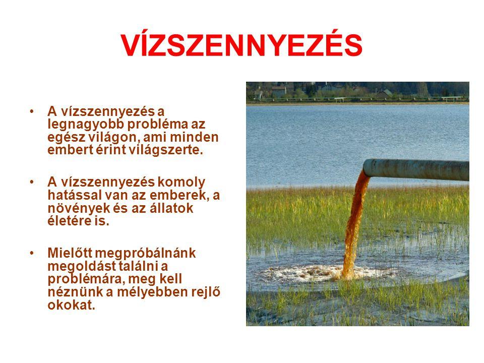 VÍZSZENNYEZÉS A vízszennyezés a legnagyobb probléma az egész világon, ami minden embert érint világszerte.