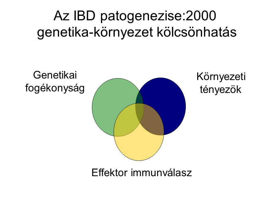 Az IBD patogenezise:2000 genetika-környezet kölcsönhatás