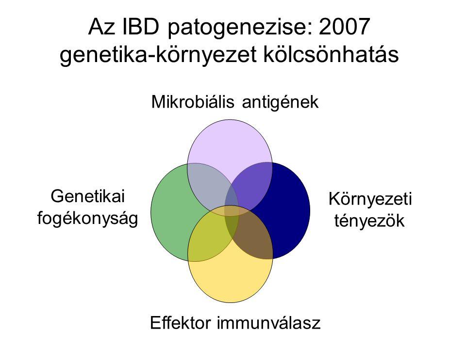 Az IBD patogenezise: 2007 genetika-környezet kölcsönhatás