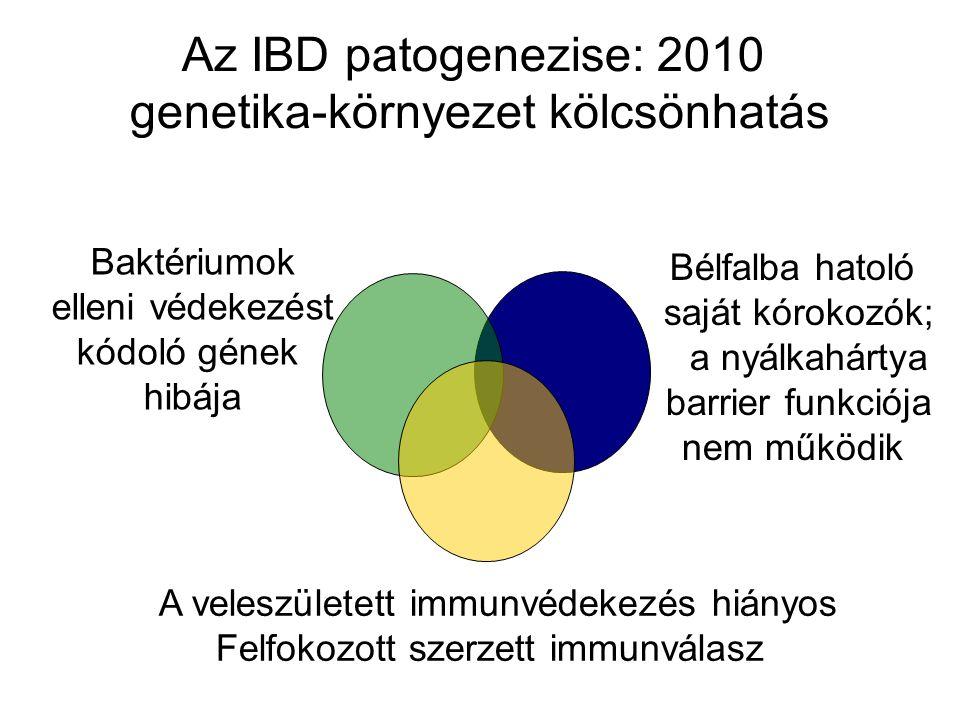 Az IBD patogenezise: 2010 genetika-környezet kölcsönhatás