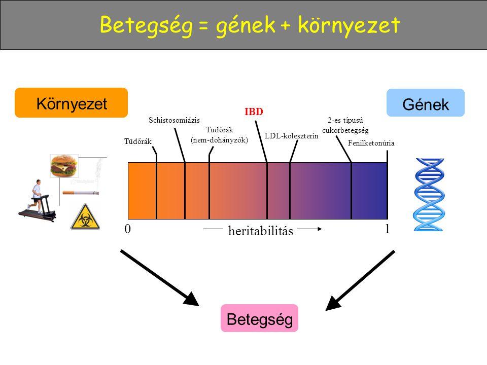 Betegség = gének + környezet