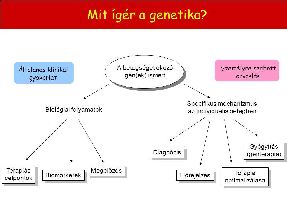 Mit ígér a genetika A betegséget okozó gén(ek) ismert Diagnózis