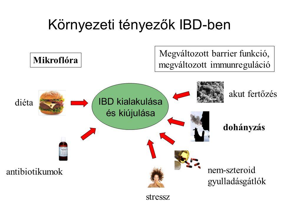 Környezeti tényezők IBD-ben