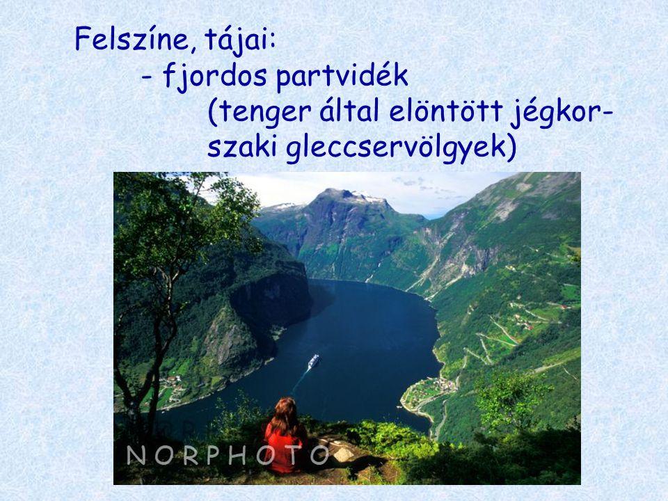 Felszíne, tájai:. - fjordos partvidék. (tenger által elöntött jégkor-