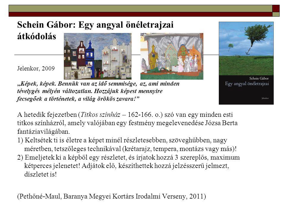 Schein Gábor: Egy angyal önéletrajzai átkódolás