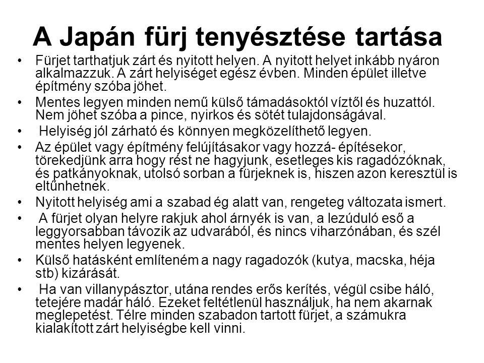 A Japán fürj tenyésztése tartása