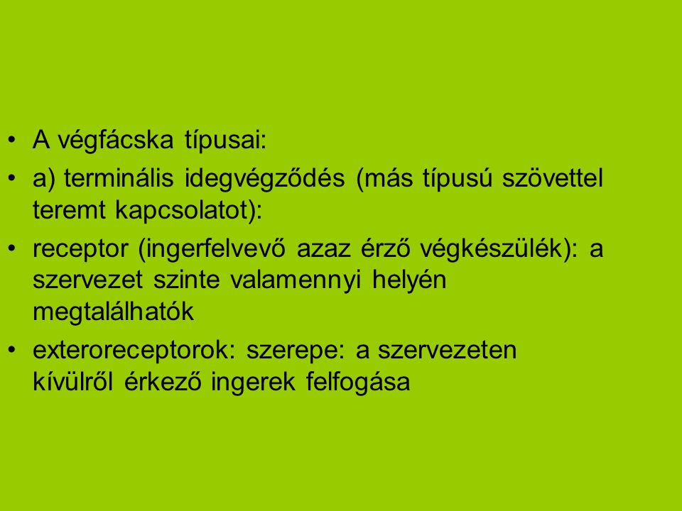 A végfácska típusai: a) terminális idegvégződés (más típusú szövettel teremt kapcsolatot):