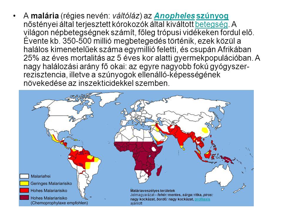A malária (régies nevén: váltóláz) az Anopheles szúnyog nőstényei által terjesztett kórokozók által kiváltott betegség. A világon népbetegségnek számít, főleg trópusi vidékeken fordul elő. Évente kb. 350-500 millió megbetegedés történik, ezek közül a halálos kimenetelűek száma egymillió feletti, és csupán Afrikában 25% az éves mortalitás az 5 éves kor alatti gyermekpopulációban. A nagy halálozási arány fő okai: az egyre nagyobb fokú gyógyszer-rezisztencia, illetve a szúnyogok ellenálló-képességének növekedése az inszekticidekkel szemben.