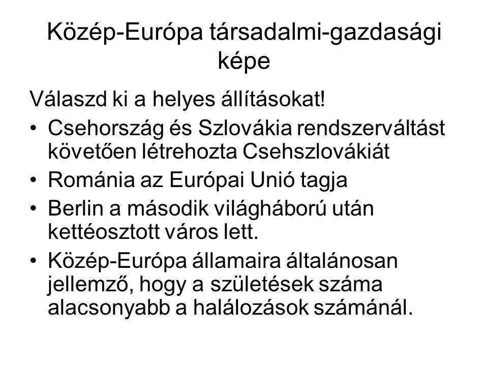 Közép-Európa társadalmi-gazdasági képe
