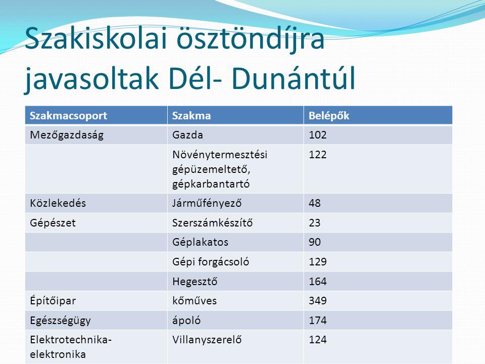 Szakiskolai ösztöndíjra javasoltak Dél- Dunántúl