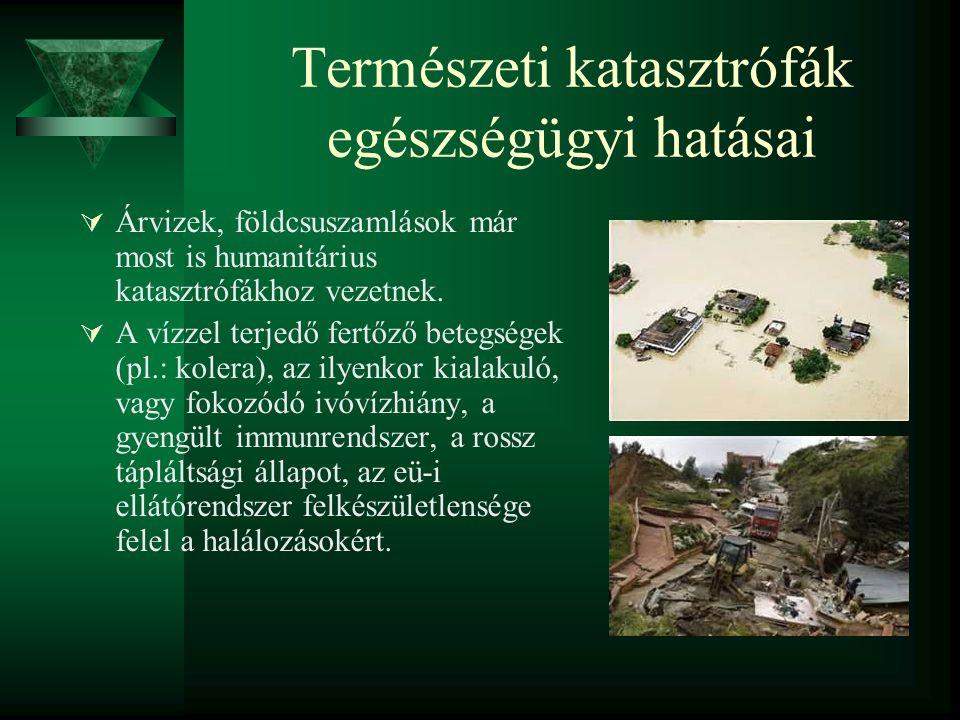 Természeti katasztrófák egészségügyi hatásai