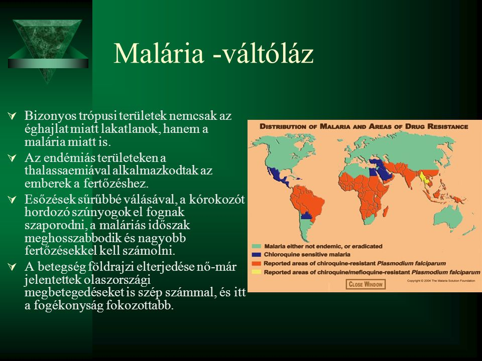 Malária -váltóláz Bizonyos trópusi területek nemcsak az éghajlat miatt lakatlanok, hanem a malária miatt is.