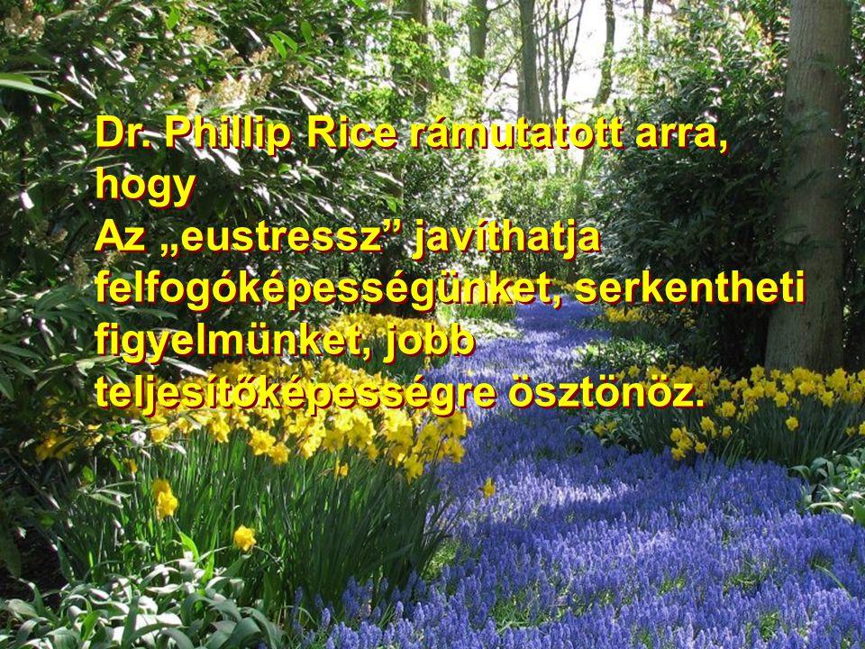 Dr. Phillip Rice rámutatott arra, hogy