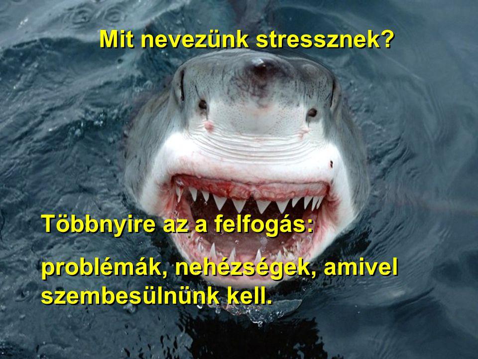 Mit nevezünk stressznek