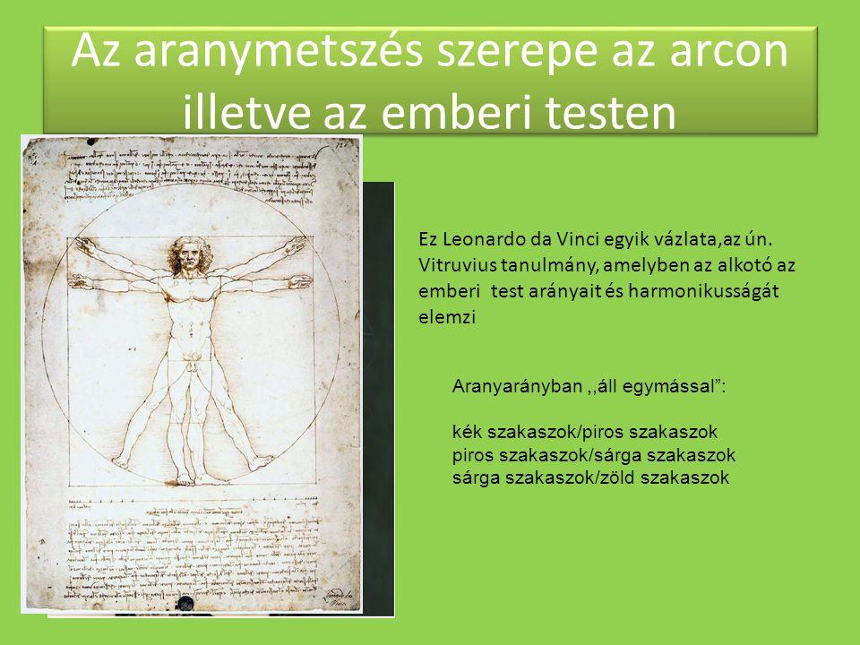 Az aranymetszés szerepe az arcon illetve az emberi testen