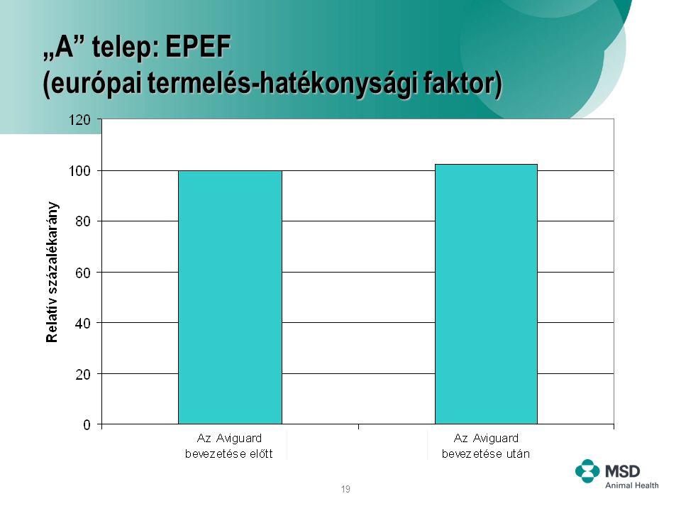 """""""A telep: EPEF (európai termelés-hatékonysági faktor)"""