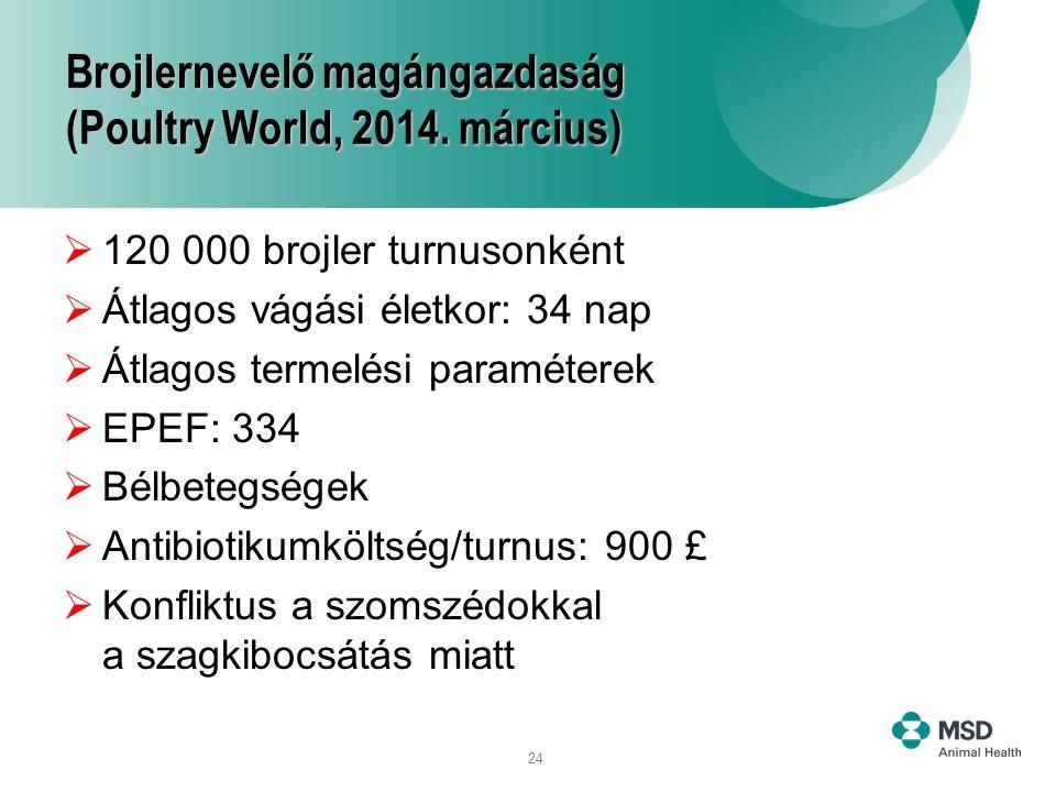 Brojlernevelő magángazdaság (Poultry World, 2014. március)