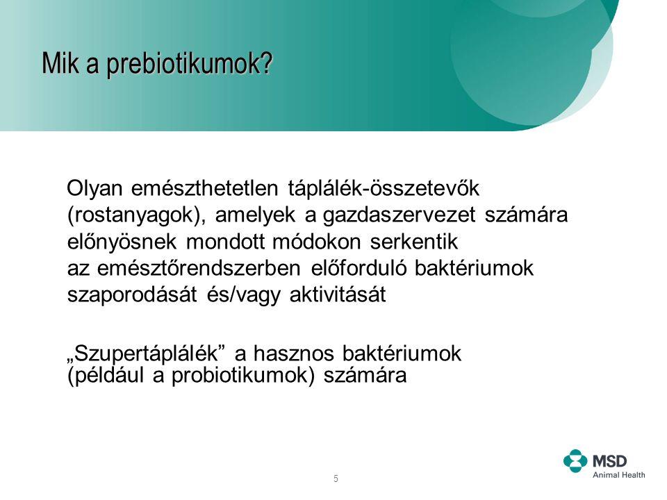 Mik a prebiotikumok