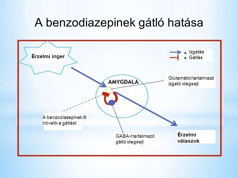 A benzodiazepinek gátló hatása
